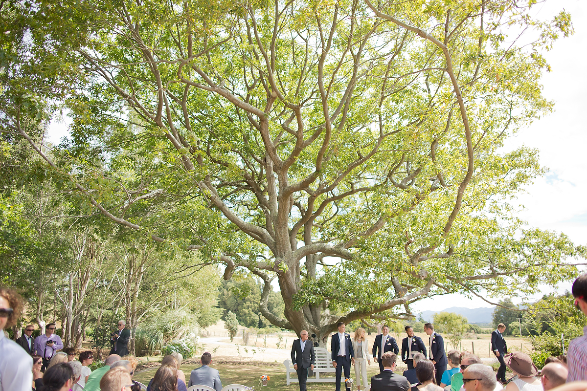 wellington wedding photography NZ - 0629.JPG
