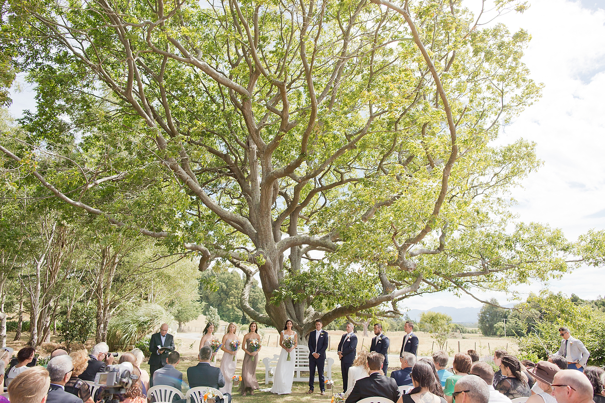 wellington wedding photography NZ - 0640.JPG