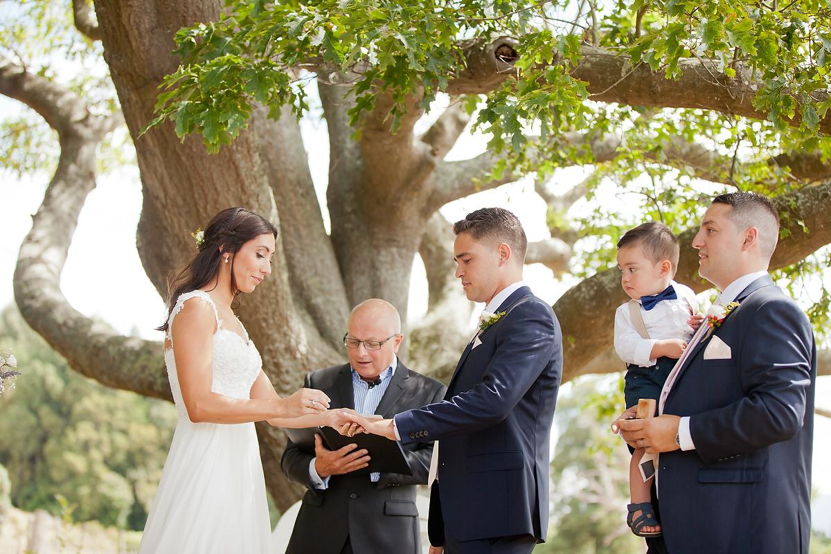 wellington wedding photography NZ - 0646.JPG