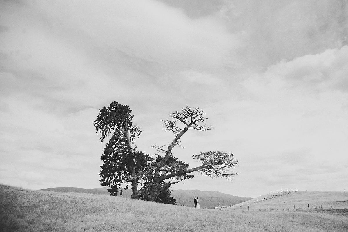wellington wedding photography NZ - 0667.JPG