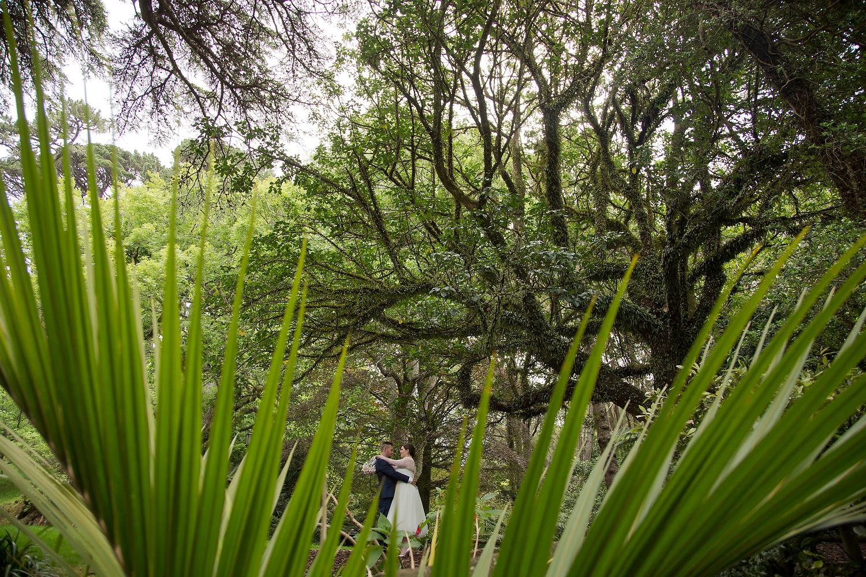 wellington wedding photography NZ - 0351.JPG