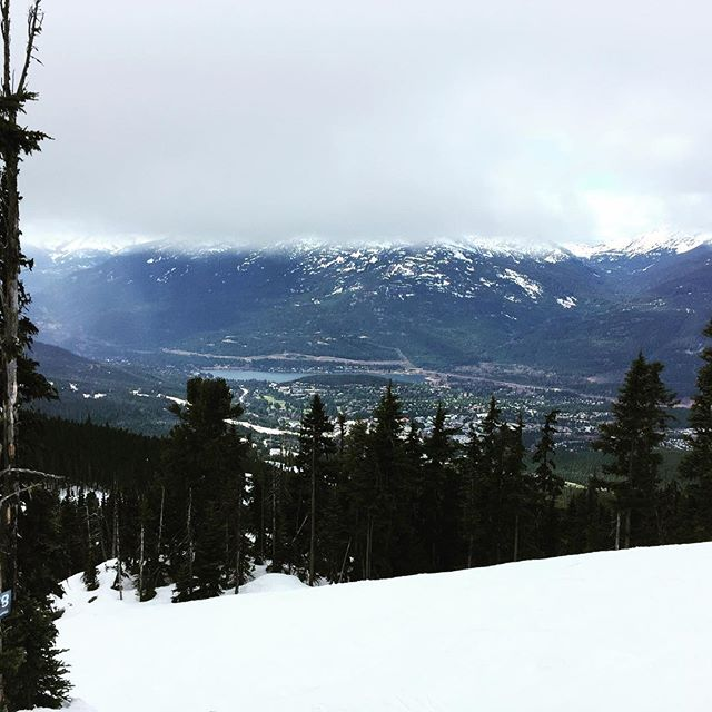 Crazy day skiing through fog at the top and sunshine at the bottom. #whistlerblackcomb
