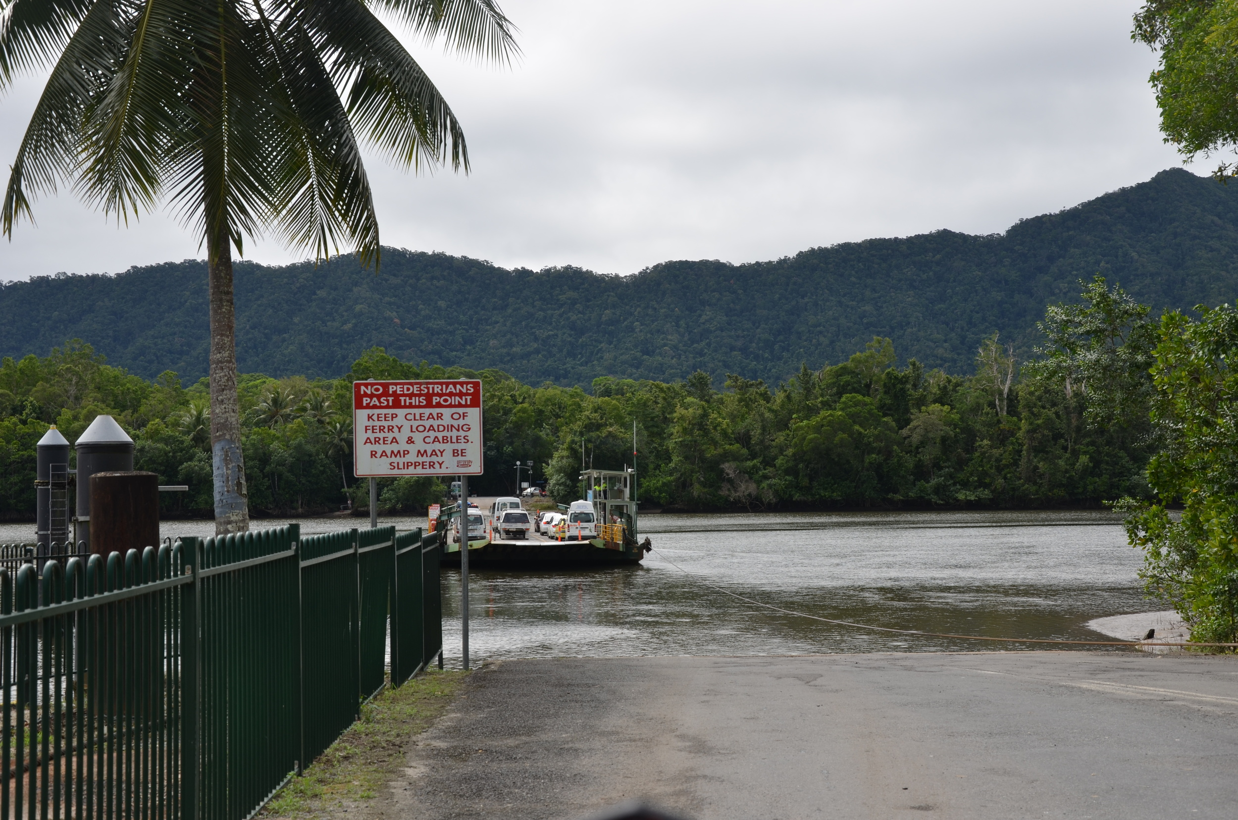 Daintree Ferry