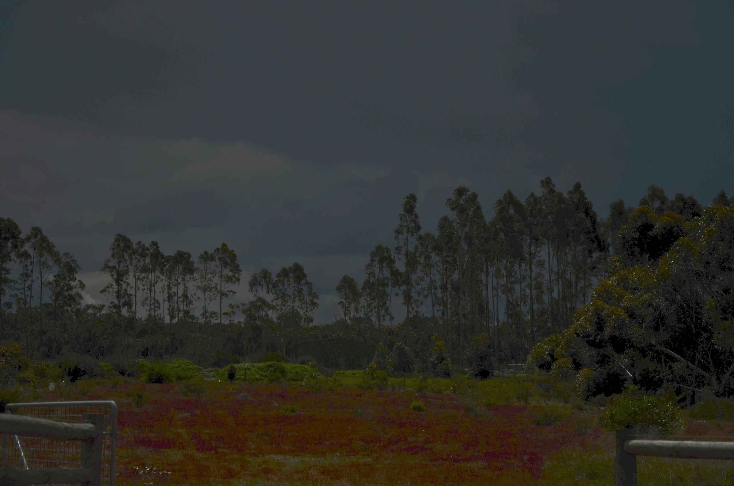 Monet Moment!  Albany, Western Australia