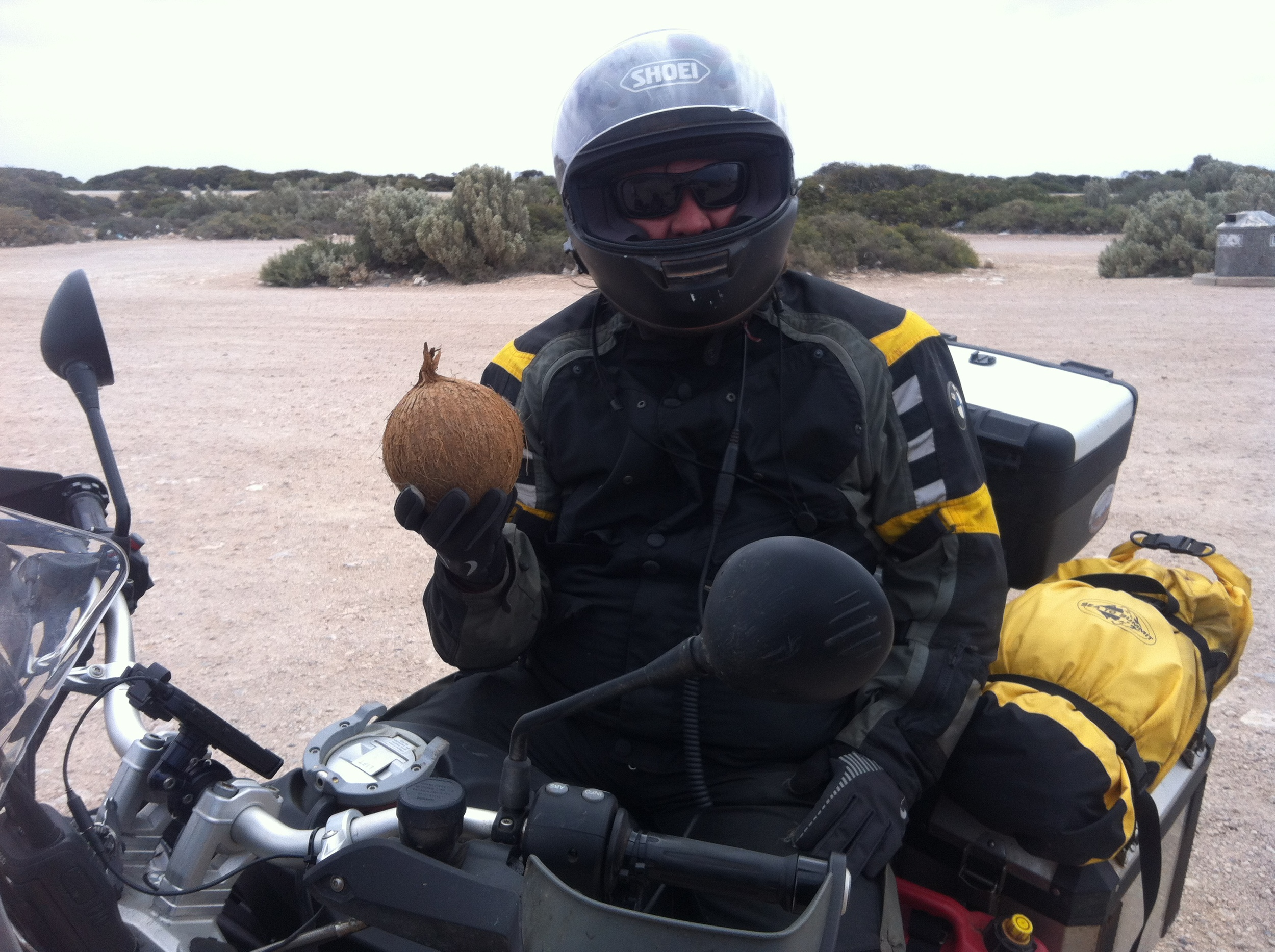 Coconut contraban!