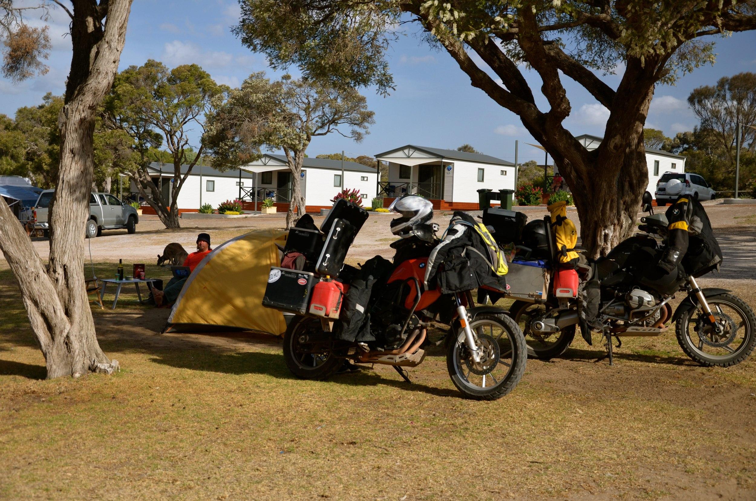 Coffin Bay Caravan Park camp...see the roo behind Kev?