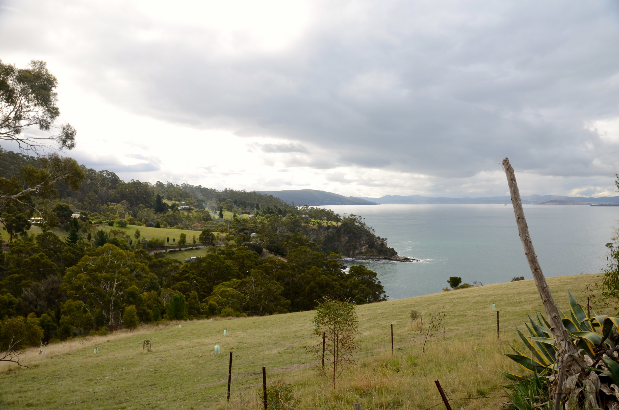 Awesome coastline