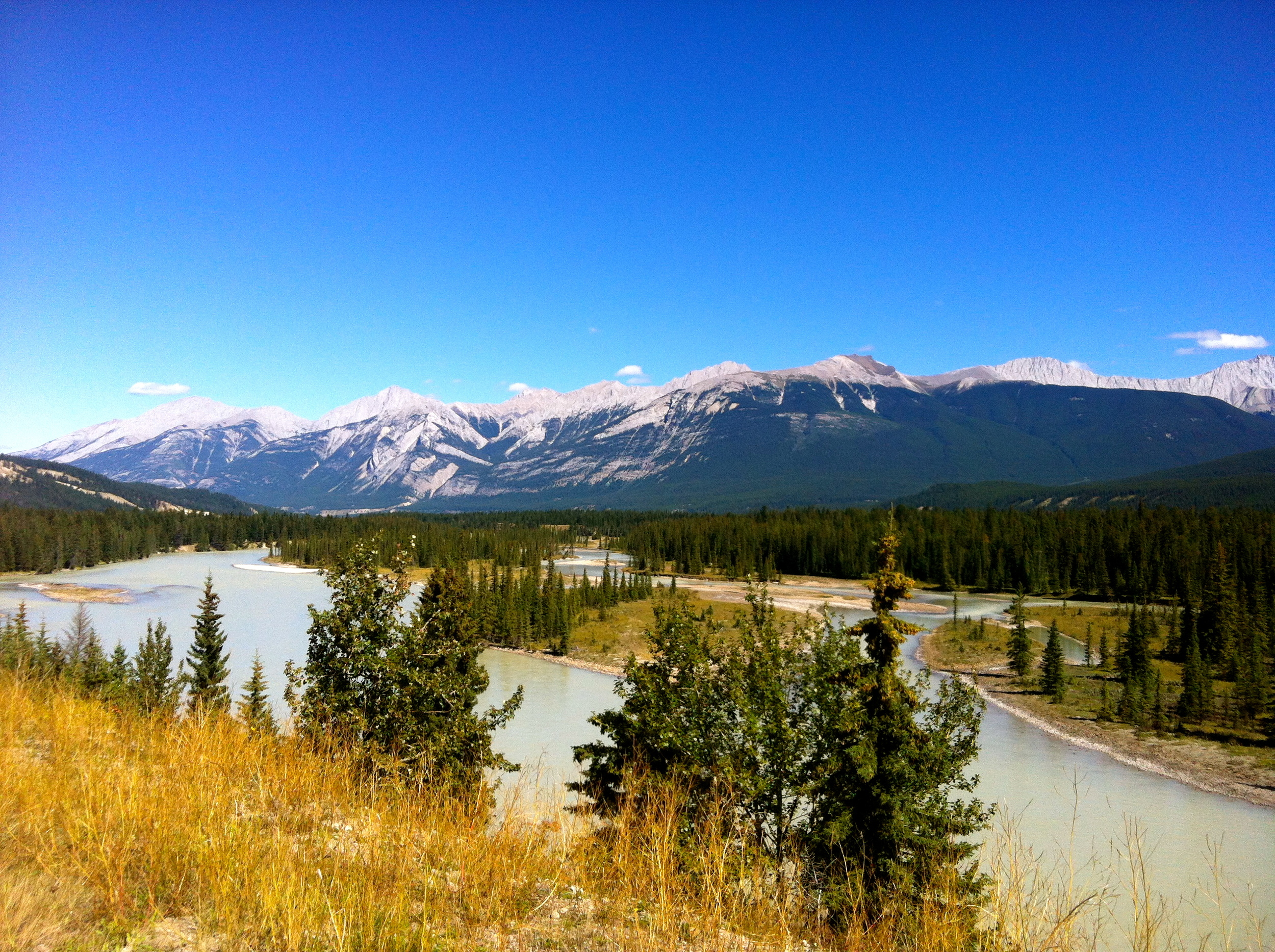 Looking out over the Miette River and Athabasca River junction
