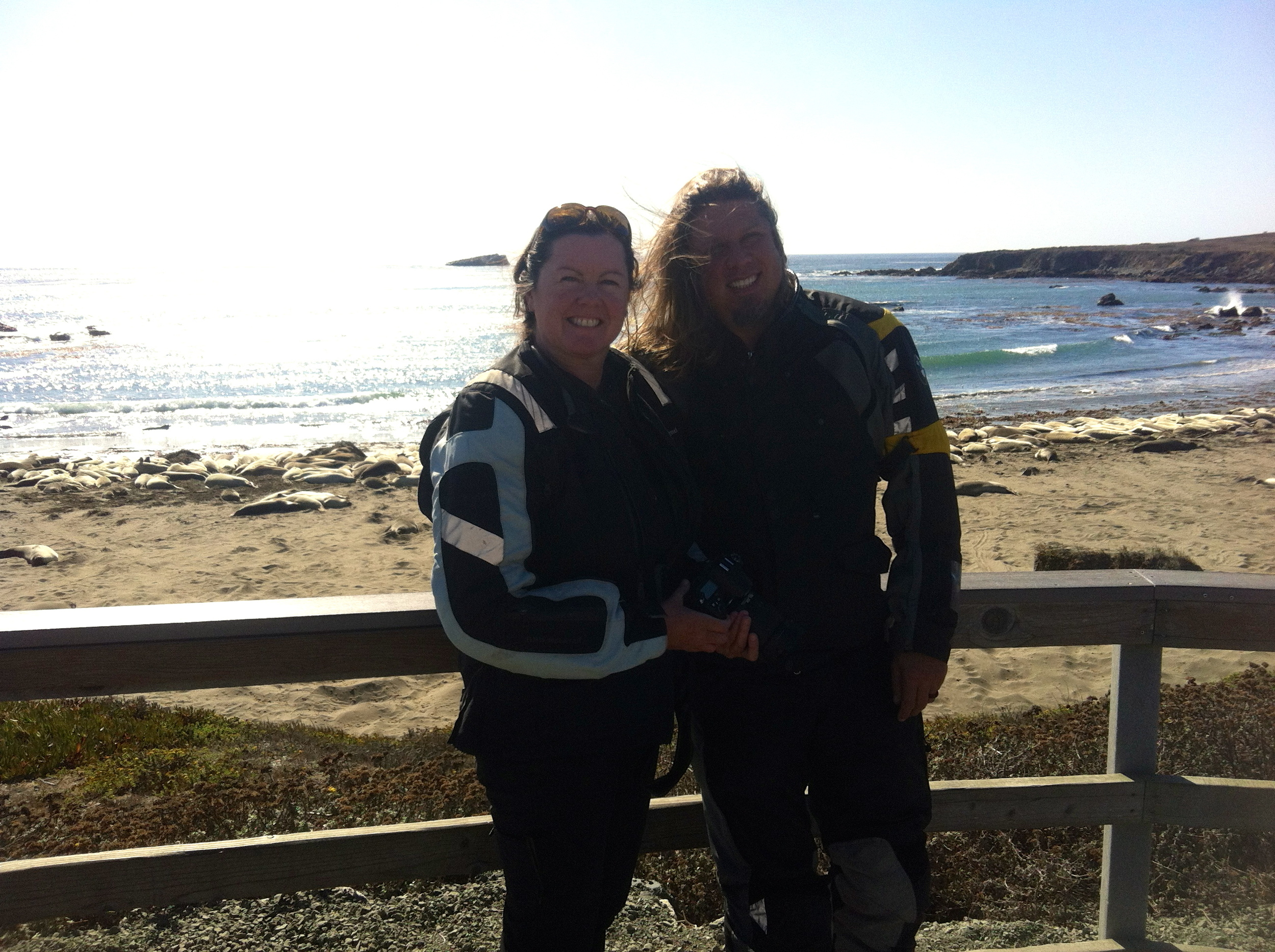 Stopping at the Elephant Seals on our way south to Morro Bay, California