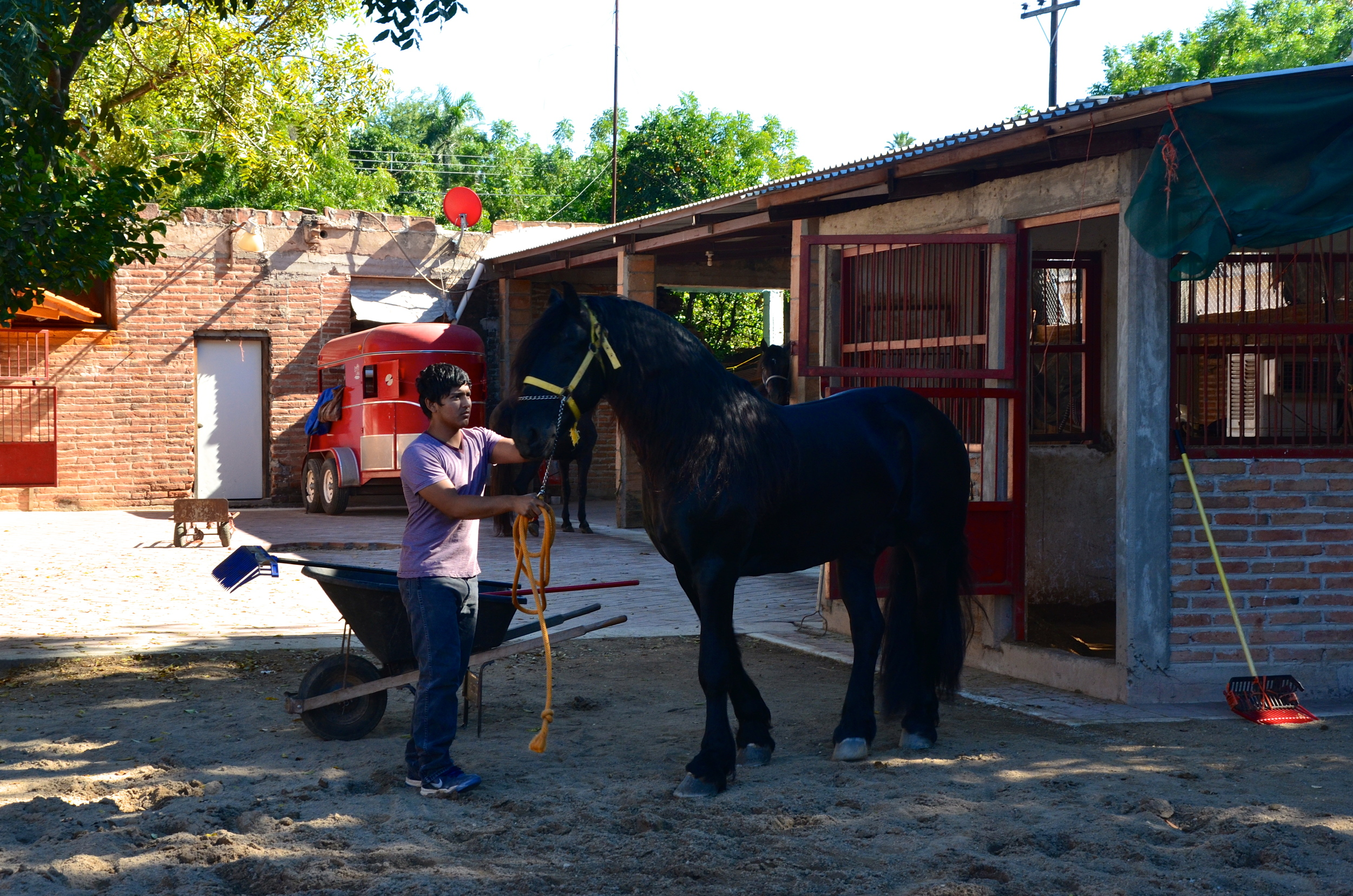 The stables next to our hacienda