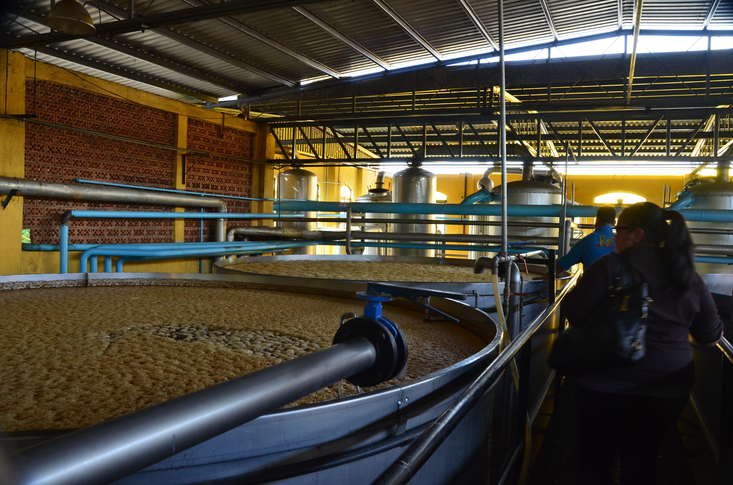 The fermentation vats…yes we stuck our fingers in there!