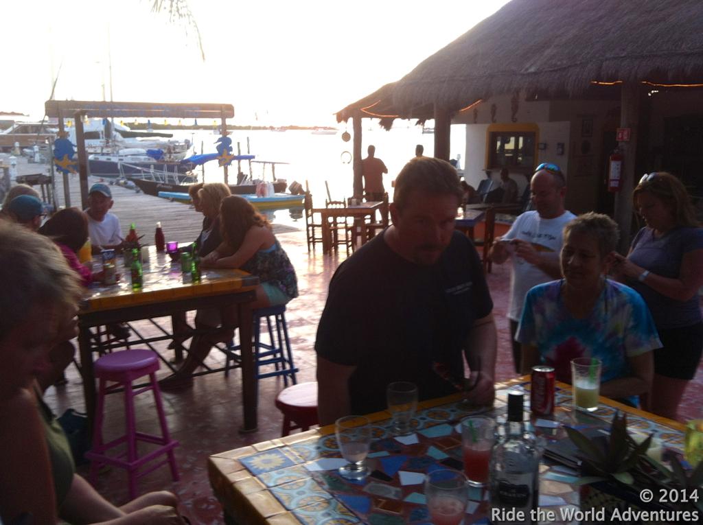 Sea dwellers meet land dwellers!