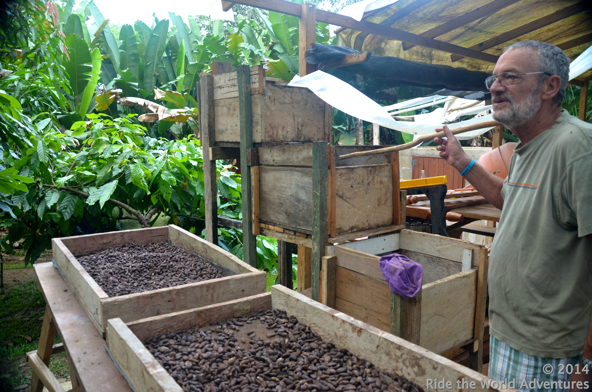 Kevin showing us how his Farm works…The last of the cocoa beans drying!