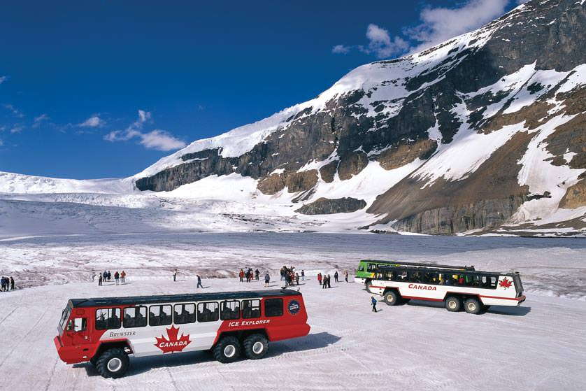 Image Source: Brewster Travel Canada