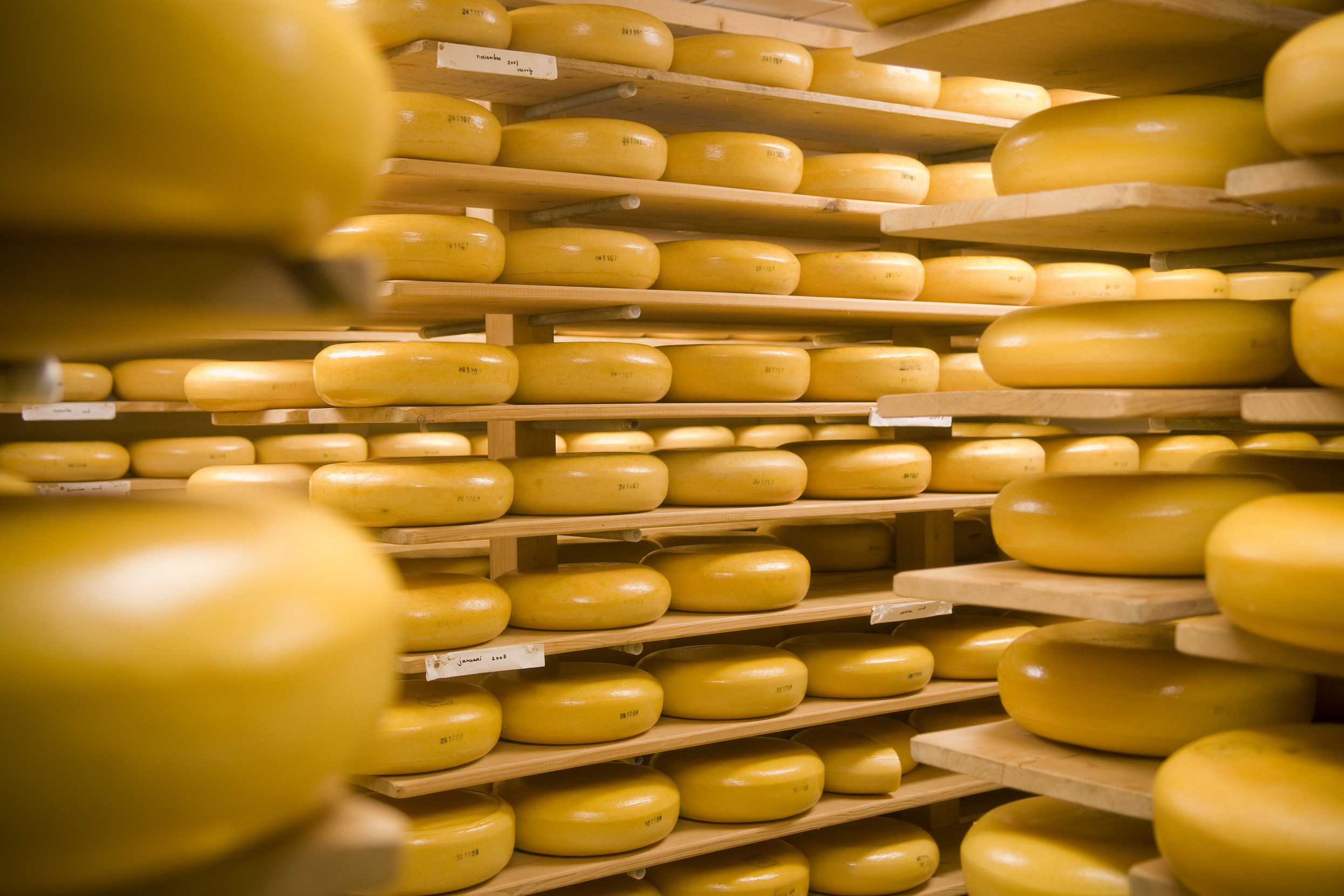 NL_359-Cheese-Source-NL-Agency.jpg