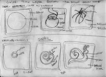 snail & grapefruit sketchweb