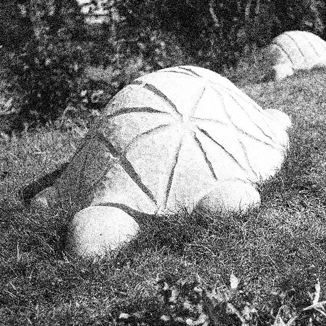 kakelkonst-flogsta-forskola-skoldpaddor.jpg