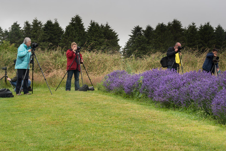 lavender workshop students.