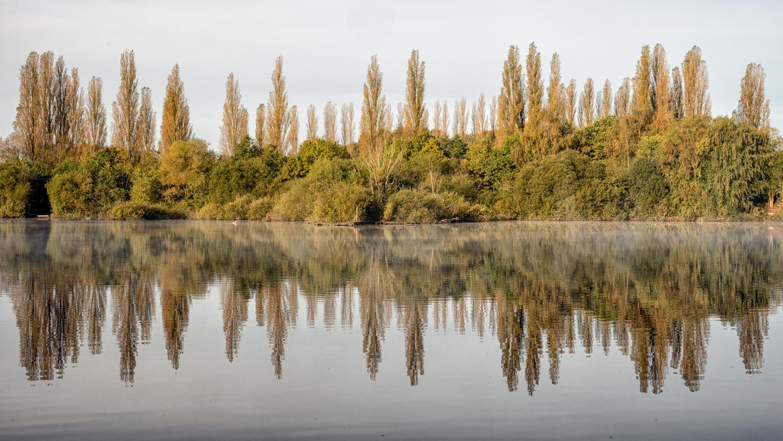 brandon reflections