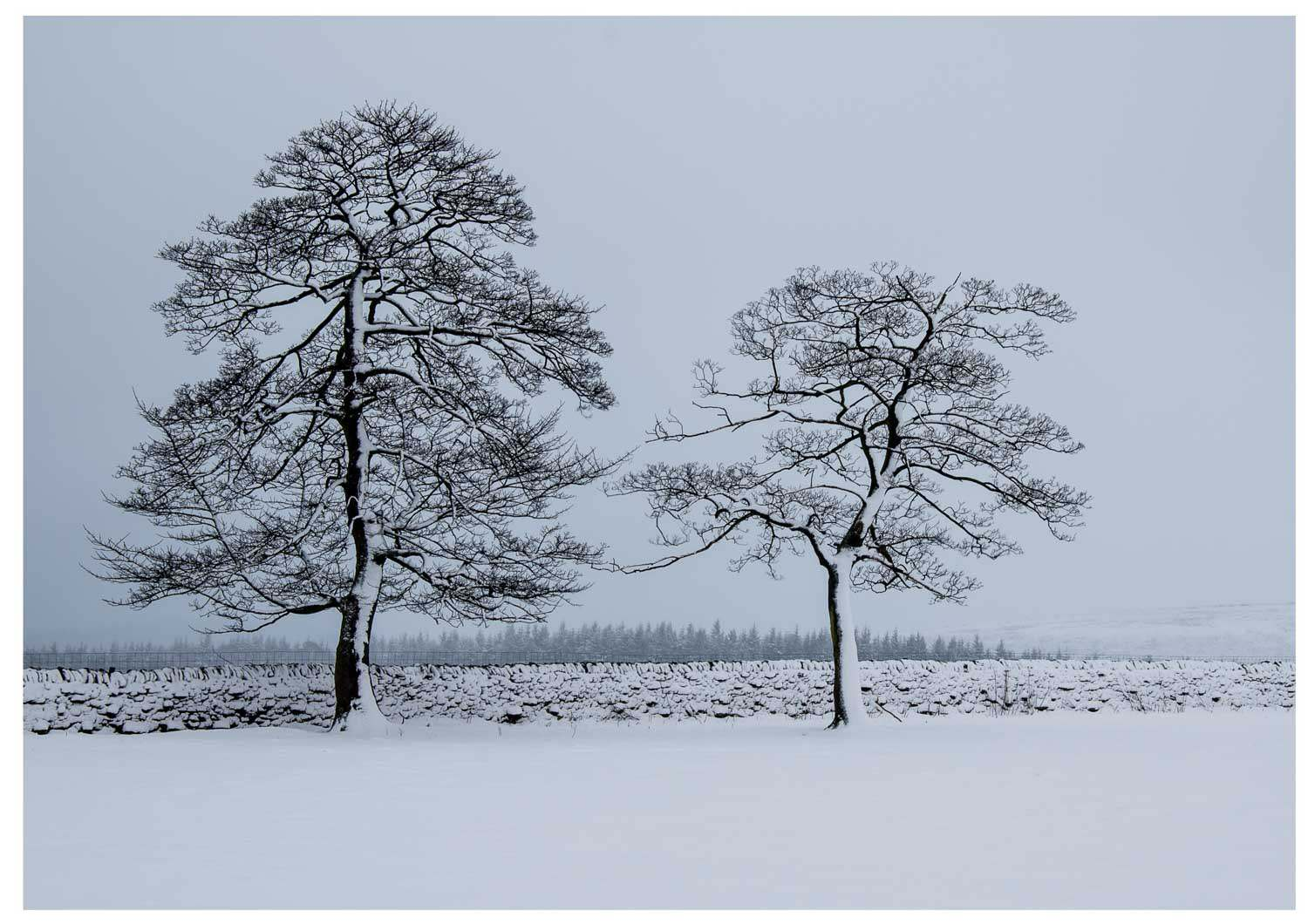 Mike Ford - Based in Yorkshire so had the fortune of weather to support this beautiful scene