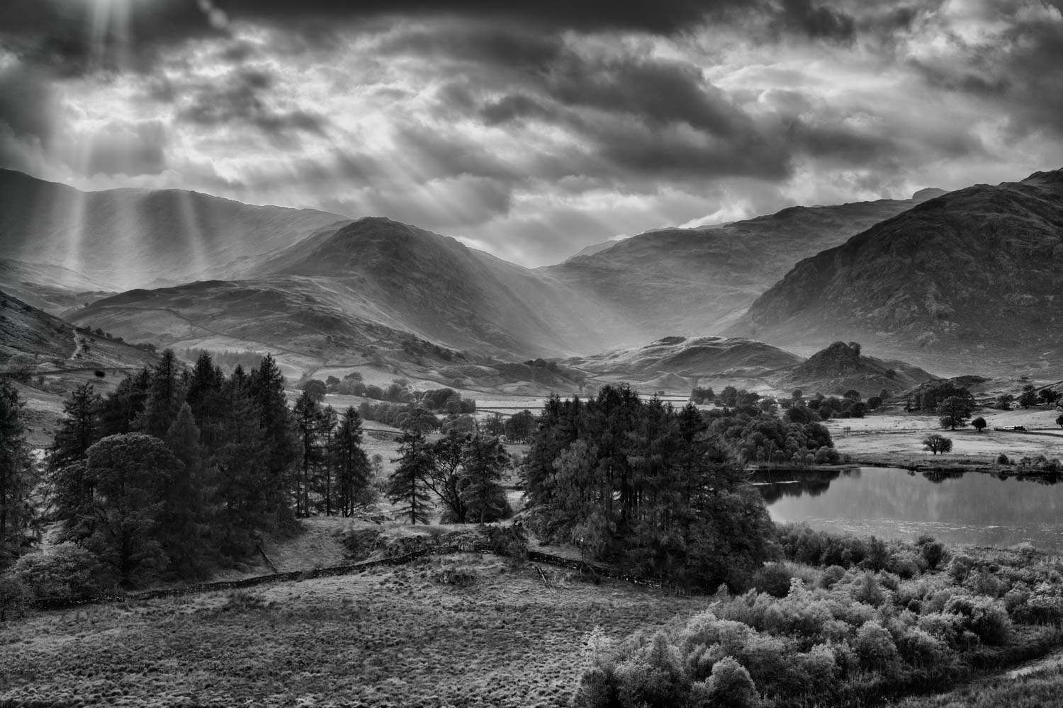 langdale light