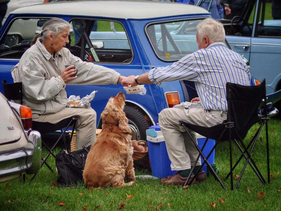 highly COMMENDED - Steve green - tea for two