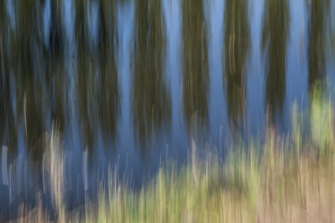 "Poplars - ISO100 | F29 | ""1 | at 100mm No filters"