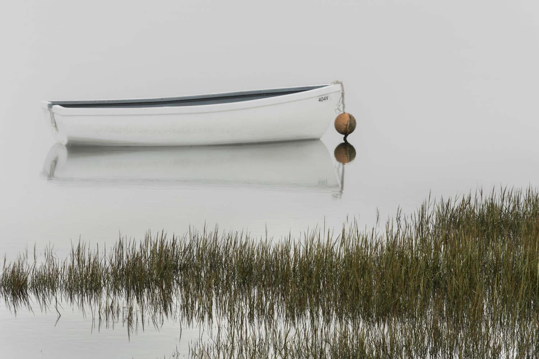 White Boat - Oct 2016
