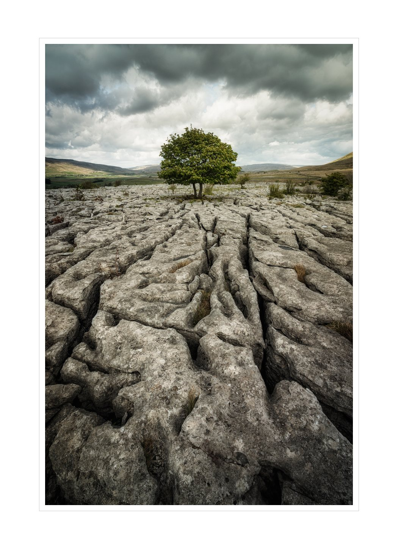 southerscales limestone - cracks