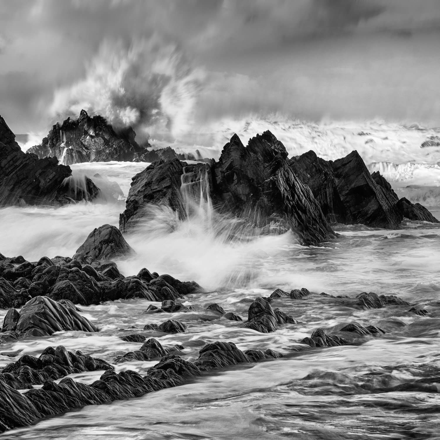 black and white photography course