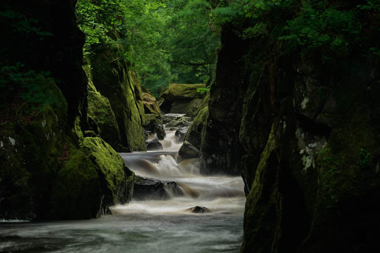 Fairy Glen 3-Alan-Ranger-Photography.jpg