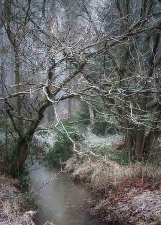 Hay Wood - knowle - Sat 5th Jan 33% Off