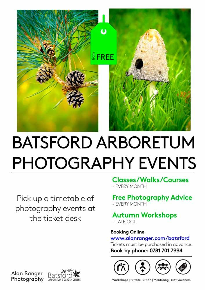 Batsford Arboretum Photography Tuition