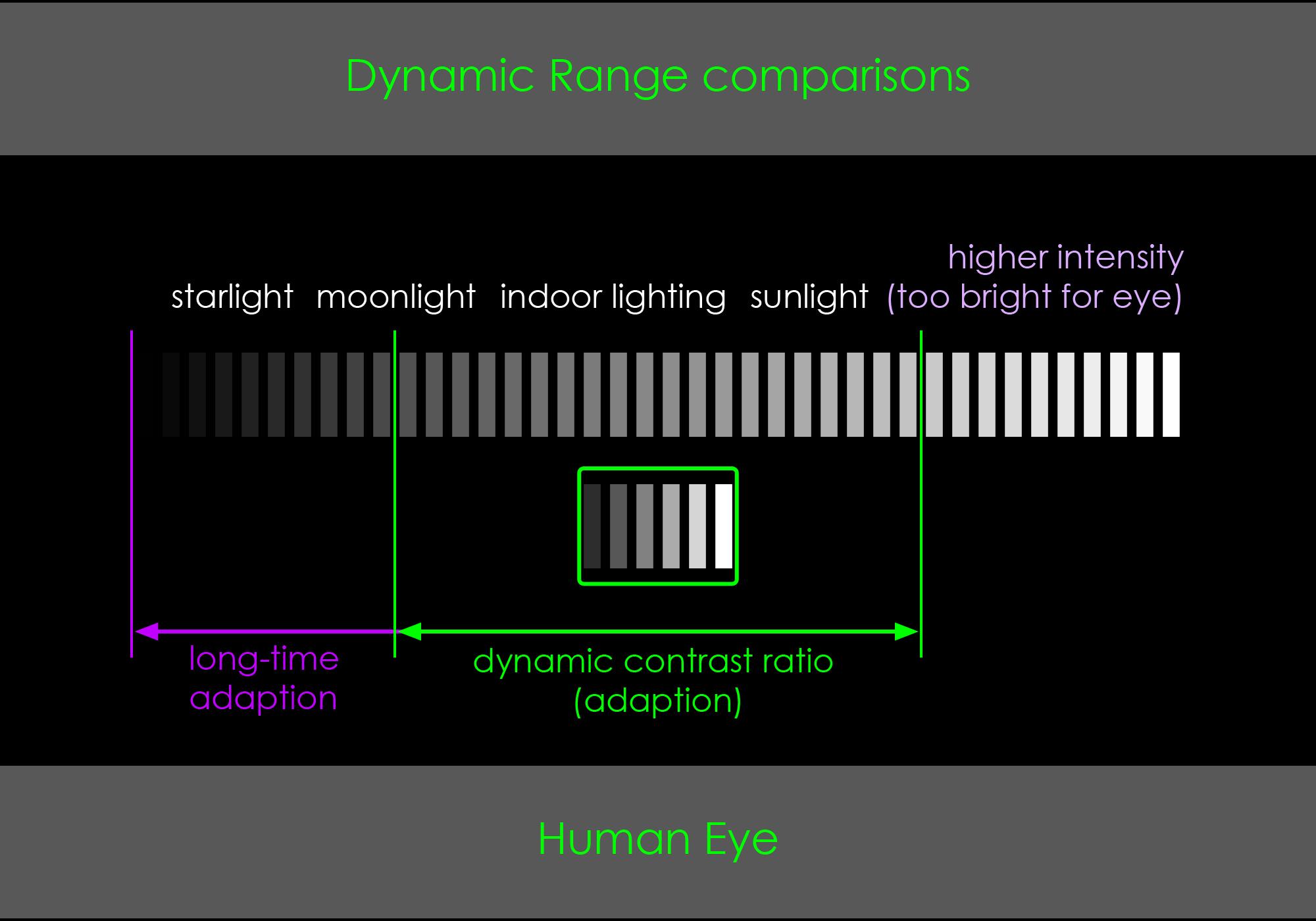 comparison_Human_Eye.jpg