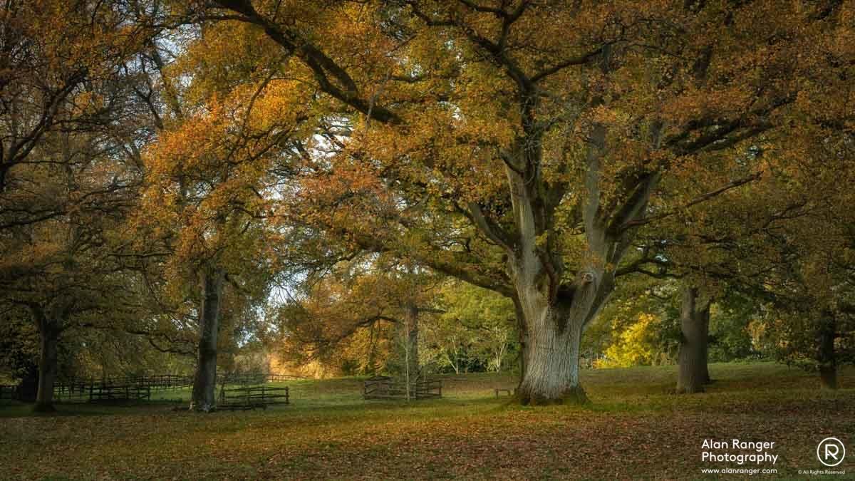 batsford autumn 3