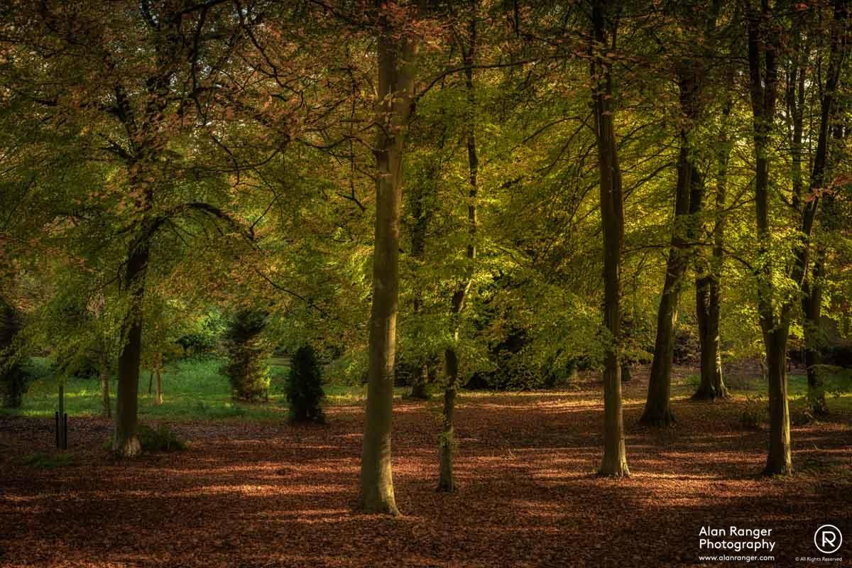 batsford autumn 2