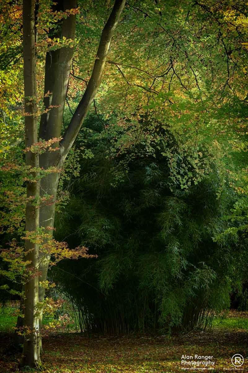 batsford autumn 1