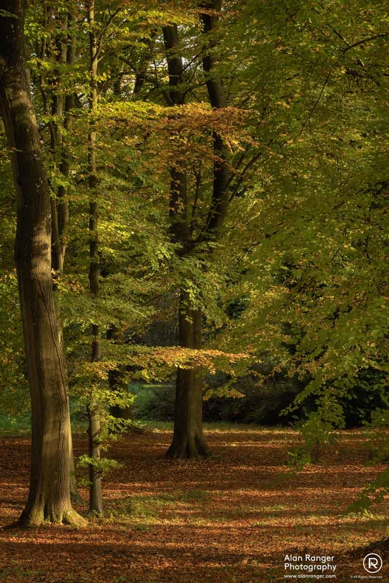 batsford autumn 10