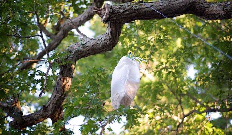Ursack: Bear Resistant Food Storage Bag