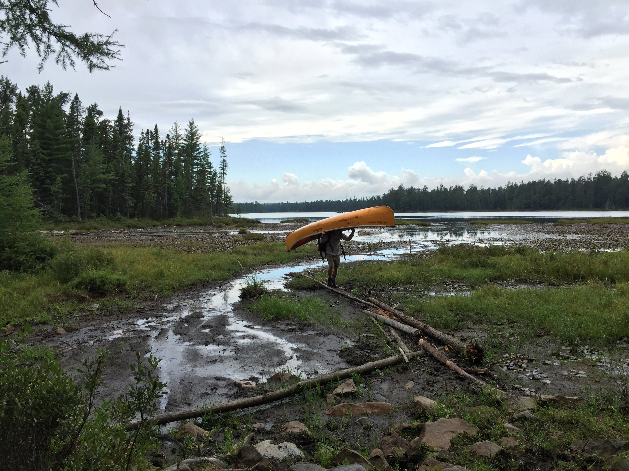 A mucky portage in the Canton Lakes, Temagami, Ontario. Day 15 of 17.