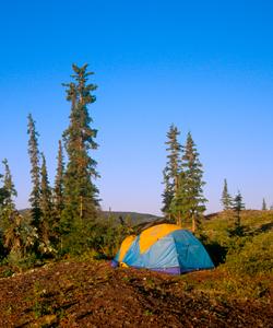Photo © Wayne Lynch, Parks Canada