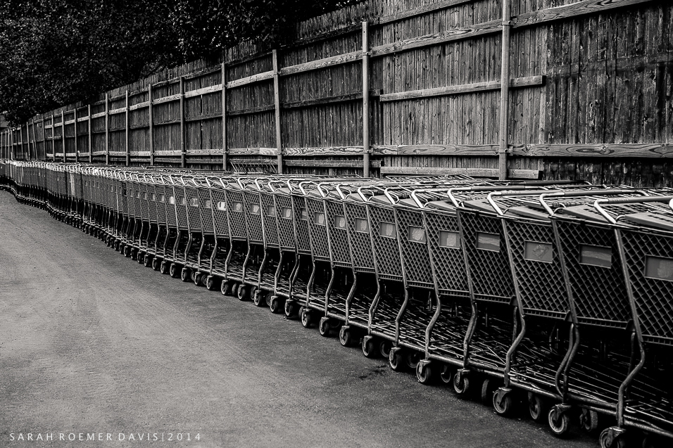 Day One | Shopping carts