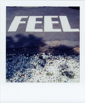 Polaroid_SX70_08_Feel.jpg