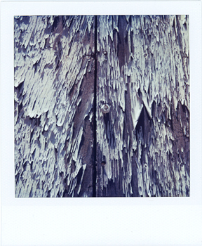 Polaroid_SX70_22_Peel.jpg