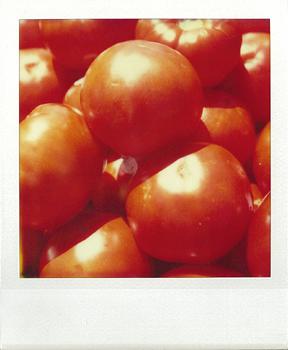 Polaroid_SX70_39_tomatos.jpg.jpg