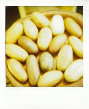 Polaroid_SX70_600_2_wood_eggs.jpg.jpg