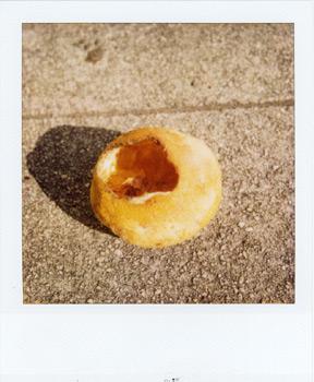 Polaroid_SX70_600_7_5.jpg.jpg