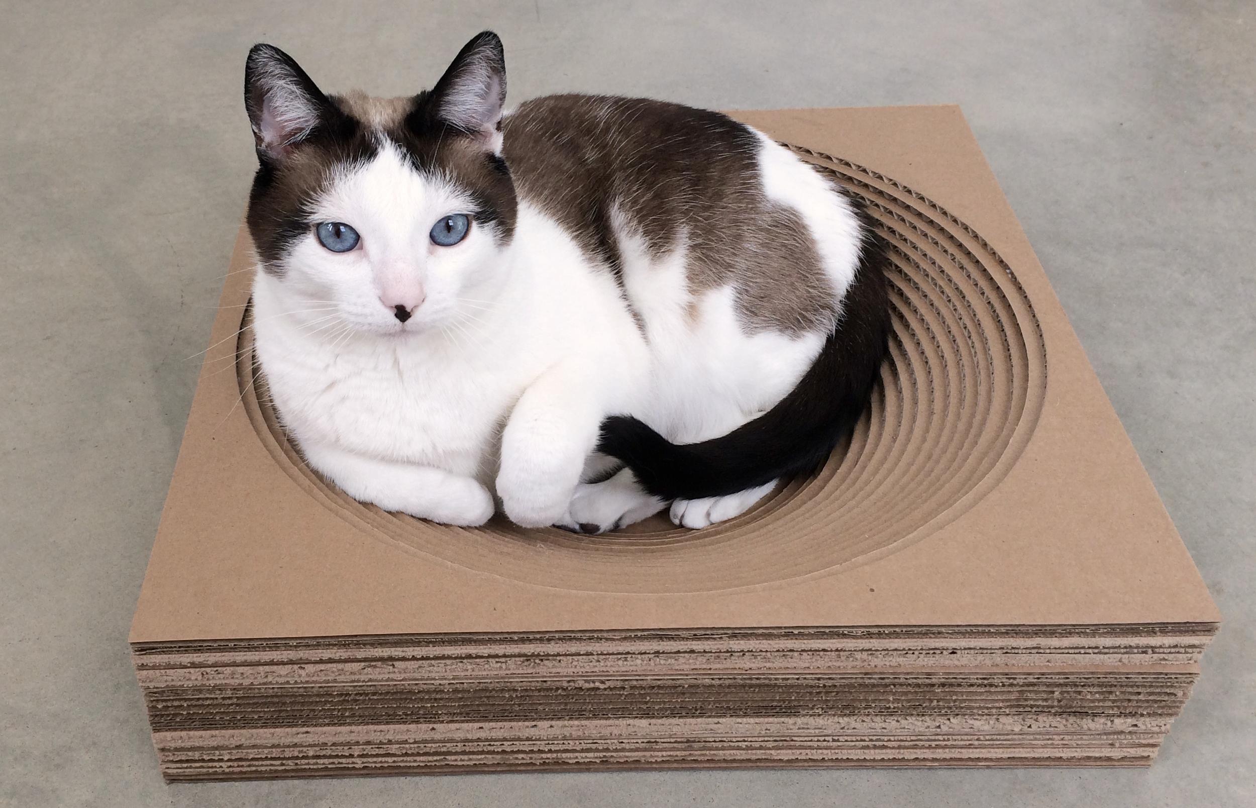 Modern Cardboard Cat   Scratcher Bed - Circle Version