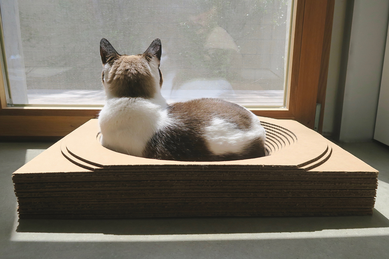 Pet Projects Cat Scratcher Beds P3 Designwork