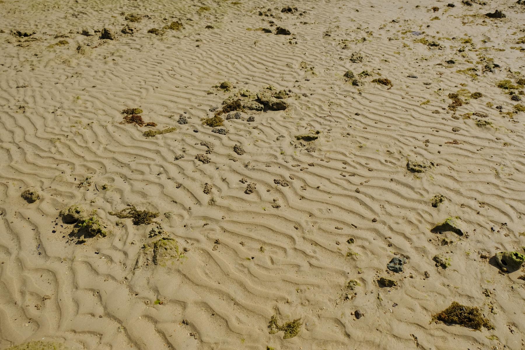 Yuna Beach - ゆうなの浜